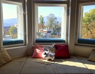 Kék ablakpárnák